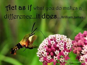 Act as if what you do makes a opt 300x225 Inspirational Picture Quotes