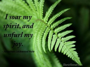 I soar my spirit and unfurl my opt 300x225 Inspirational Picture Quotes
