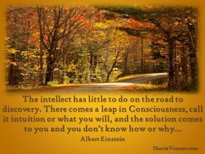 The intellect has little to do opt 300x225 Inspirational Picture Quotes