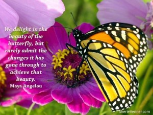 We delight in the beauty of the butterfly opt 300x225 Inspirational Picture Quotes