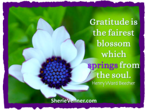 Gratititude is the fairest blossom 2