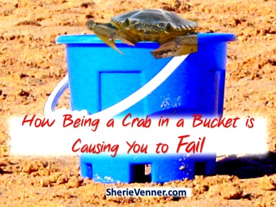How being a crab in a bucket is causing you to fail